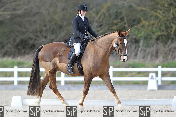 Class 5. Novice 27. Unaffiliated dressage. Brook Farm Training Centre. Essex. 19/03/2017. MANDATORY Credit Garry Bowden/Sportinpictures - NO UNAUTHORISED USE - 07837 394578