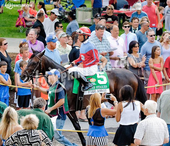 Fire Assay before The Obeah Stakes (gr 3) at Delaware Park on 6/15/13