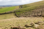 Undulating countryside upland chalk landscape in winter downland area of North Wessex Downs, near Cherhill, Wiltshire, England, UK