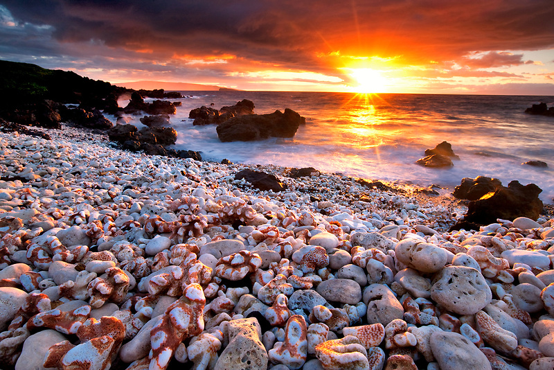 Sunset on beach with coral. Maui, Hawaii.
