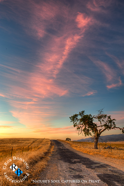 Vivid sunset over the back roads of Tuolumne County, California