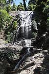Tristan Falls - Dorrigo NP
