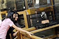 Caged Gibbons at the the world's most exotic pet shop called Noah Inner City Zoo that claims to have more than 300 species for sale, many are exotic and rare animals - some endangered. Many animals are for sale - One of these Gibbons is use as talent in TV commercials while others are for sale at around 2.2 million Yen or 25,000 US$
