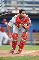 Auburn Doubledays catcher Raudy Read (29) checks the runner during a game against the Batavia Muckdogs on June 16, 2014 at Dwyer Stadium in Batavia, New York.  Batavia defeated Auburn 4-3.  (Mike Janes/Four Seam Images)
