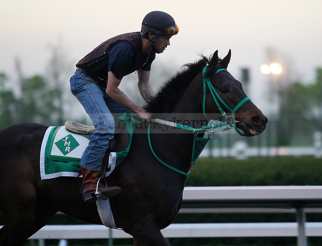A horse during morning workouts at Keeneland Racetrack in Lexington, Ky., on Wednesday, April 4, 2012. Photo by Tessa Lighty | Staff