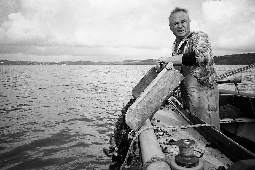 Oyster fisherman Barry Prynn is pouring out the empty shells into water of the Carrick Roads, Cornwall. Every catch generally consists of the empty shells, while the alive oysters are only a small part of it.
