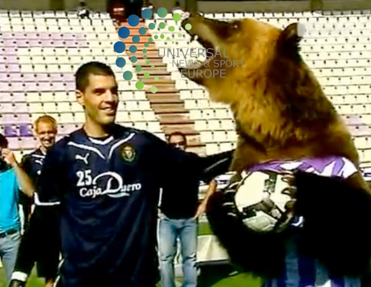 There's the Teddy Bears from Glasgow....then there's the real bear that is a team mascot at Spain's Real Valladolid. This huge animal can toot a horn, perform perfect somersaults and even pose with the star players without chomping their nervous heads off. And  they also taught him how to perform an obscene gesture to react to bad officiating. ..17 September 2009: Universal News and Sport (Scotland).All pictures must be credited to  www.universalnewsandsport.com.(0ffice) 0844 884 51 22.
