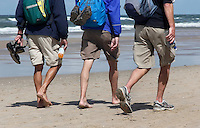 Wandelaars  lopen de Strandzesdaagse