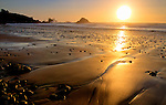 Oregon, North coast, Ecola State Park, Seaside.Golden sands and seastacks.