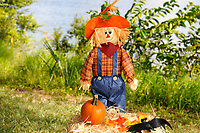 I love utilizing props! Scarecrow pictured with small bale of hay, pumpkin, artificial leaves, and a bat with a canal backdrop. Photographed at Arthur Marshall Loxahatchee Wildlife Refuge, Boynton Beach, Florida.