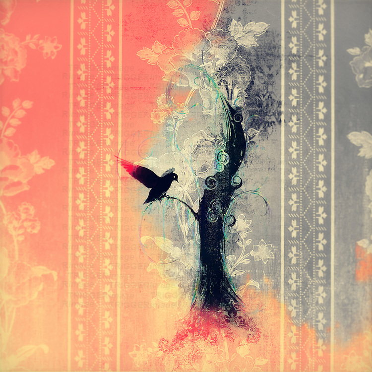 Image of black bird landing on tree, with fire around.