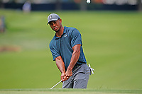 Tiger Woods (USA) chips on the 8th hole during the 1st round of the 100th PGA Championship at Bellerive Country Club, St. Louis, Missouri, USA. 8/9/2018.<br /> Picture: Golffile.ie | Brian Spurlock<br /> <br /> All photo usage must carry mandatory copyright credit (© Golffile | Brian Spurlock)