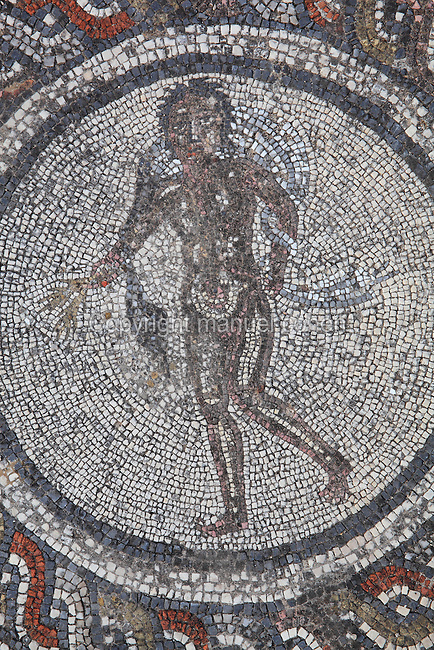 Figure in a medallion from the Roman mosaic of the Four Seasons, in the dining room of the House of Dionysos, 3rd century AD, Volubilis, Northern Morocco. Volubilis was founded in the 3rd century BC by the Phoenicians and was a Roman settlement from the 1st century AD. Volubilis was a thriving Roman olive growing town until 280 AD and was settled until the 11th century. The buildings were largely destroyed by an earthquake in the 18th century and have since been excavated and partly restored. Volubilis was listed as a UNESCO World Heritage Site in 1997. Picture by Manuel Cohen