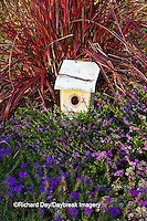 63821-22311 Birdhouse in garden with Lavender Lace Mexican Heather (Cuphea hyssopfolia), Blue Violet Verbena (Verbena tapien) and Fireworks Red Fountain Grass (Pennisetum setaceum 'Fireworks') Marion Co., IL