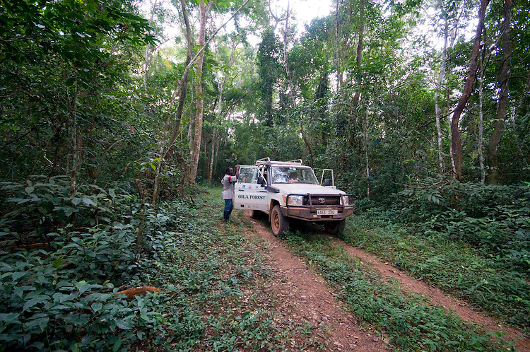 A jeep in the Gola Forest