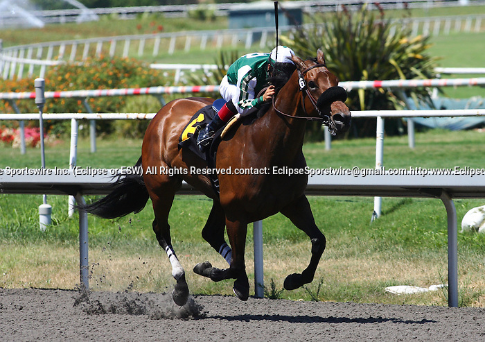 17 July 2010: Sweet August Moon and Victor Espinoza win the A Gleam Handicap(GII) at Hollywood Park, Inglewood, CA