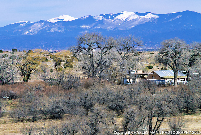 The Sangre de Cristo mountains lie under a winter blanket of snow while cottonwood trees await the  coming of spring in this winter scene near Santa Fe, New Mexico
