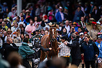 LOUISVILLE, KENTUCKY - MAY 04:  Country house jogs back to the winners circle after the Kentucky Derby at Churchill Downs in Louisville, Kentucky on May 04, 2019. Evers/Eclipse Sportswire/CSM