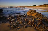 Early morning Henderson Bay. Far North. Northland, New Zealand.