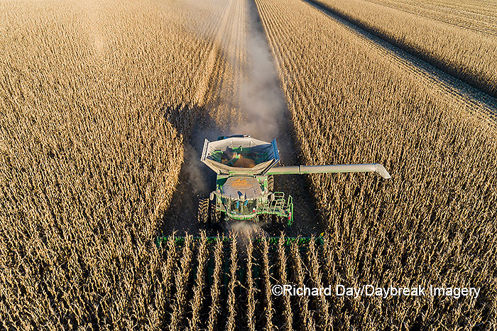63801-13012 Harvesting corn in fall-aerial  Marion Co. IL