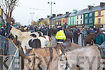 Horses and people crowd Main Street at the Castleisland Horse Fair on Monday