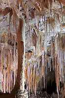 stalactites and column, Painted Grotto, Carlsbad Caverns National Park, New Mexico