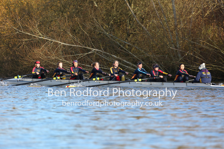 Crew: 62   W 8+ BAND-2   Wolfson College (Oxford) Boat Club   WOO-HAMMOND<br /> <br /> Wallingford Head 2017<br /> <br /> To purchase this photo, or to see pricing information for Prints and Downloads, click the blue 'Add to Cart' button at the top-right of the page.