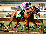 DEL MAR, CA September 01: #5 Bellafina wins with ease with Flavien Prat in the Grade I Del Mar Debutante at Del Mar on September 01, 2018 in Del Mar, California (Photo by Chris Crestik/Eclipse Sportswire)