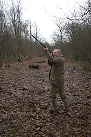 During a winter rough shoot in Kent, England, one of the hunters fires at a pheasant which has been flushed out by his dog from the depths of the wood and is flying noisily overhead.