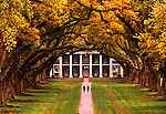 Tourists walk between the double row canopy of live oak trees planted in the early 1700's at the Oak Alley Plantation, a classic Greek revival style antebellum house.