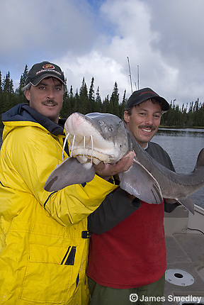 Fishing lake sturgeon
