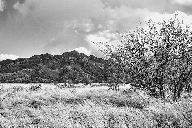 Approaching storm in the Arizona desert adds drama.