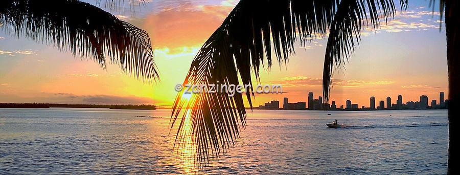 Florida, Miami, FL, Sunset, Cityscape, Skyline, Beautiful