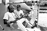 San Diego Padres Marvell Wynne and Shane Mack during a game against the Los Angeles Dodgers at Dodger Stadium during the 1987 season in Los Angeles,California.(Larry Goren/Four Seam Images)