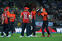England's Lewis Gregory celebrates dismissing Tim Seifert during the 4th Twenty20 International cricket match between NZ Black Caps and England at McLean Park in Napier, New Zealand on Friday, 8 November 2019. Photo: Dave Lintott / lintottphoto.co.nz