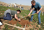 Israeli and foreign peace activists help Palestinian farmers to cultivate their land near a former military camp of the Israeli army on the edge of Beit Sahour city near the West Bank city of Bethlehem, February12, 2010. Photo by Najeh Hashlamoun