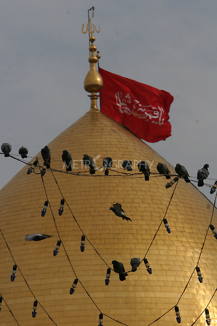 KARBALA, IRAQ: Pigeons roost on electrical wires in front of a mosque...Shia pilgrims pray during the last day of the Ashura festival...Photo by Metrography
