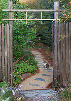 Cat on stepping stone path walkway through rustic wooden fence and gate into sideyard with California native plants, Heath-Delaney garden