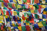 TIBETAN PRAYER FLAGS fly on the grounds of the TSUGLAGKHANG COMPLEX which is the DALAI LAMA'S residence in exile in MCLEOD GANG - DHARMSALA, INDIA