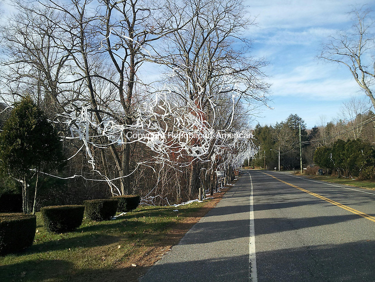 TORRINGTON, CT- 14 November 2013- 111413BJ01-- Police received a report of trees along Norfolk Road Thursday morning that had toilet paper thrown over the bare trees along the road. More than a dozen trees along the Brandy Hill Road intersection and more further north up the road that had toilet paper hanging from the branches. Bruno Matarazzo Jr. Republican-American