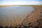 Butley River creek with muddy river bed, Boyton, Suffolk, England