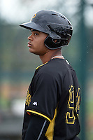 Pittsburgh Pirates Jhoan Herrera (94) during minor league spring training on March 23, 2015 at Pirate City in Bradenton, Florida.  (Mike Janes/Four Seam Images)