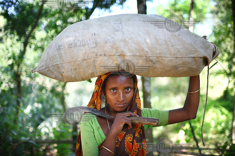 A Garo woman with a sack of dry leaves that she has collected in the forest to use for cooking. The Garo (or Mandi, as they refer to themselves) are an ethnic minority thought to be of Tibeto-Burmese origin. Prior to British rule they were mostly anamists but missionary work led the majority to convert to Christianity. The Garo of the Madhupur forest have long been under the threat of eviction by the government and the forest that they gain much of their livelihood from is being rapidly destroyed by unregulated logging.