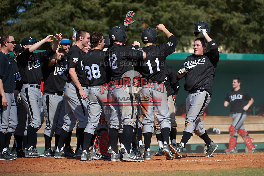 Edgewood Eagles Nick Lehner (36) is greeted at home by teammates after hitting a home run during the first game of a doubleheader against the Lasell Lasers on April 14, 2016 at Terry Park in Fort Myers, Florida.  Edgewood defeated Lasell 9-7.  (Mike Janes/Four Seam Images)