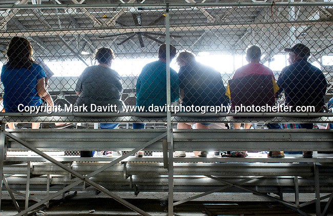 Cattle show attendees at the Polk County Fair fill the bleachers outside of the show ring to talk, make friends and sometimes agree or disagree with the judge.