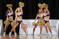 12 January 2012:  FIU's Golden Dazzlers entertain the crowd during a break in the action as the Middle Tennessee State University Blue Raiders defeated the FIU Golden Panthers, 74-60, at the U.S. Century Bank Arena in Miami, Florida.