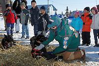 Children of Koyuk watch vet Caroline Griffits examine Lance Mackey's dogs shortly after his arrival into Koyuk on Monday during Iditarod 2011.