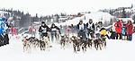 Canadian Championship Dog Derby mass start