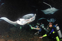 The divers (MR) underwater lights attracted planktonic food to this area where manta rays, Manta birostris, frequent to feed at night.  The Big Island, Hawaii.