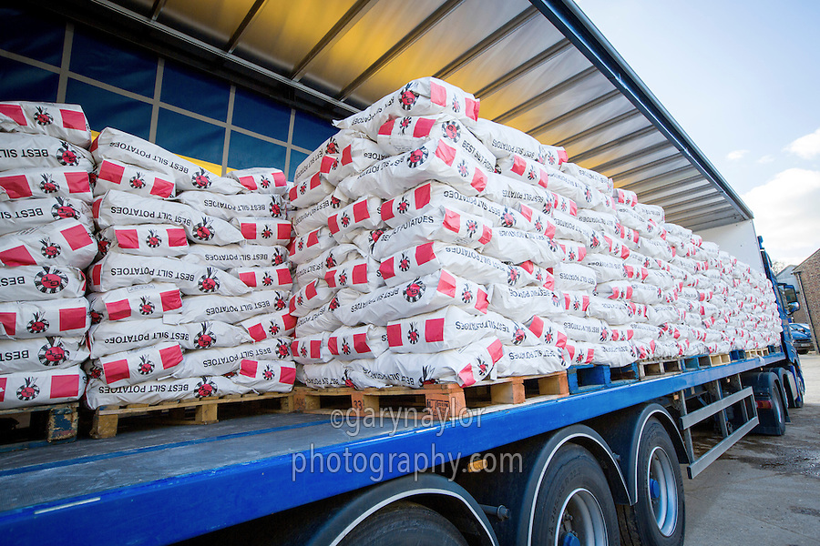 Lorry loaded with bagged potatoes - Lincolnshire, February